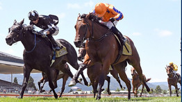 MCKAY EXCITED ABOUT PROMISING JUVENILE
