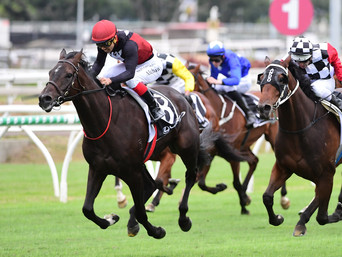MAPPERLEY RAISED SUPERGIANT WINS GR.3 GUNSYND CLASSIC
