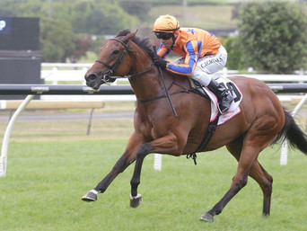 ATLANTE SIRES ANOTHER STAKES WINNER