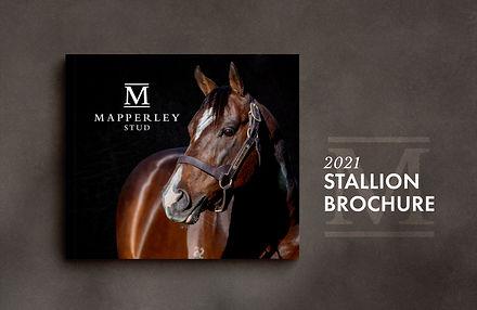Stallion Brochure Cover 2021 - Website.jpg