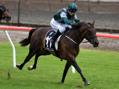 COMPLACENT FILLY WITH LOFTY AMBITIONS