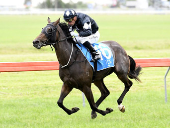 HE'S REMARKABLE FILLY WINS IMPRESSIVELY ON DEBUT