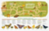 full-map-gradient.jpg