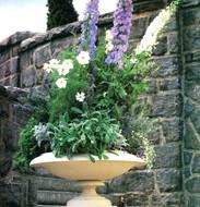 Garden Design Delphinium in Footed Urn