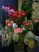 STORE FLOWERS2.jpg