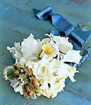 Breezy Coastal Whites Bride's Bouquet