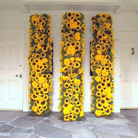 Museum Sunflowers at Doorway.jpg