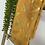 Thumbnail: לונג עלים זהב