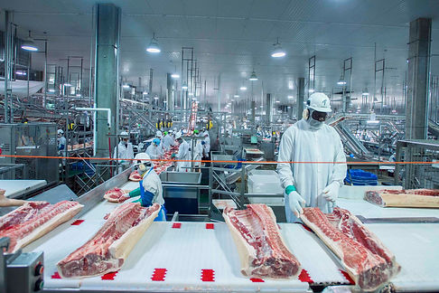 Food-Lights-for-pork-processing-facility
