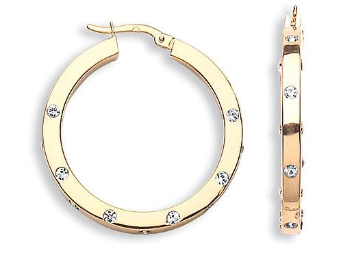 9ct Yellow Gold CZ  earrings