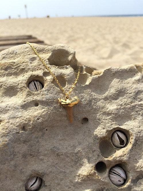 Beach {Moon} Babe 24k Shark Tooth {Small} - Gold