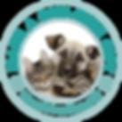 FOTAS OneTimeGift-300x300.png