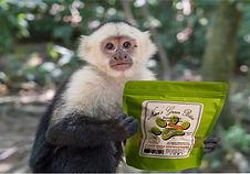 Monkey-Berri Bites image1.jpg