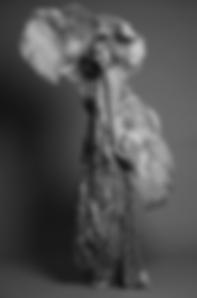 Screen Shot 2020-02-20 at 15.42.47.png