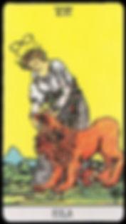 karta tarota siła lew ale tylko tarcistka ci o niej cos powie