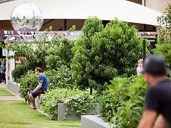 Urban Orchard.jpg