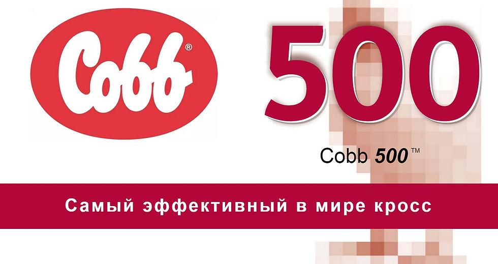 Cobb 500 Самый эффективный в мире кросс