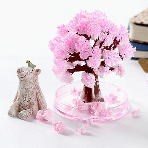 Magic Blooming Sakura