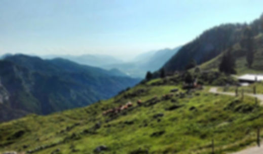 Треккинг тур в горы