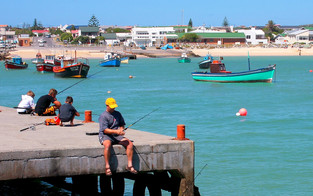 Fishing_in_Struisbaai_Harbour_-_panorami