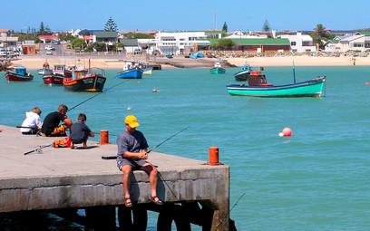 Fishing_in_Struisbaai_Harbour_-_panorami