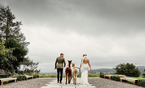 Paddock Barn Wedding