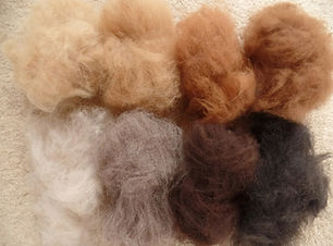 Fleece Colours.jpg