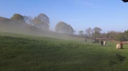 A bit hazy