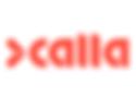 Reveal Media (Calla) Logo.png