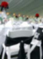 Wedding-Reception-173000557_2000x2750 (1).jpeg