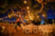 Elings_Park_string_lights_godric_grove.jpg