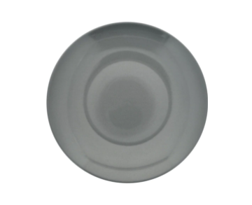 Gray Stoneware Dinner Plates, 10.5 in.