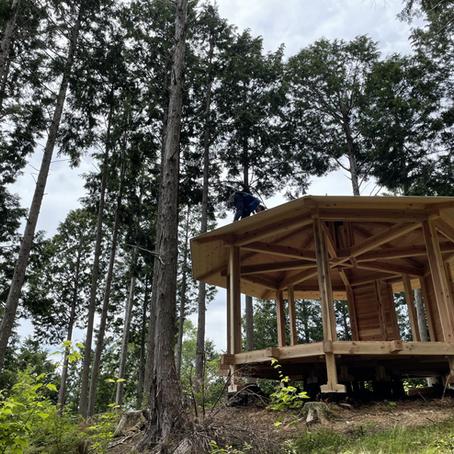 BISOWA様の山で素敵な小屋が形になってきました。