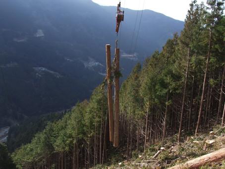 丸太(木材)が山から運ばれる動画(架線集材)