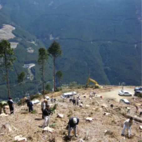 4月5日植林体験レポート