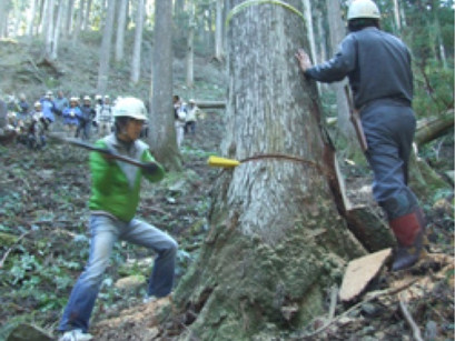 08年11月22日 伐採体験、見学「与作ツアー」レポート!