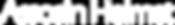 assosin-helmet-logo.png
