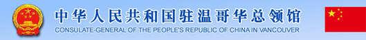china consult.jpg