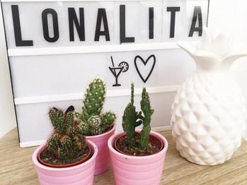 Le combo ananas/cactus