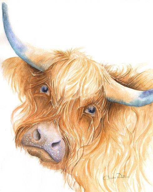 cow (9) Highland copy.jpeg