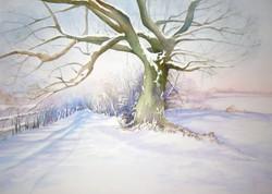 55. Chaldon Snow