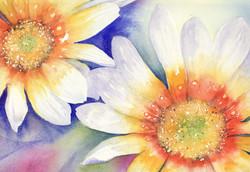 116. Pretty Flowers