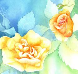 157. Orange Roses