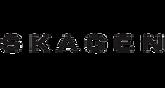 Logo skagen.png