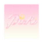 PINKINewLogo.png
