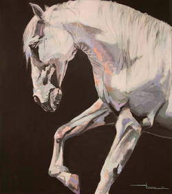 caballo BC