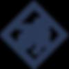 troy_logo_Diamond.png