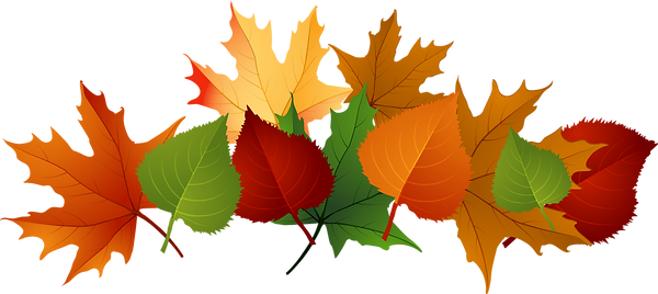 pngtube.com-pile-of-leaves-png-1180808.png