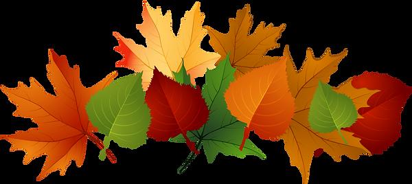 pngtube.com-pile-of-leaves-png-1180808.p