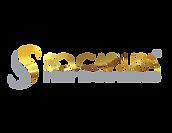 SOCAP-GOLD-LOGO-PNG.png